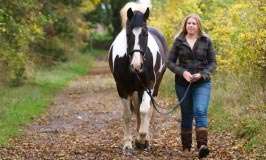 31 Things To Do With Your Horse (other than riding)