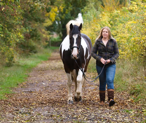 cdd406f9 Hang out with your horse. Sit in your horse's pasture. No agenda. You might  find that your horse will come over and stand near you and enjoy this 'do  ...