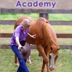 Horse Tricks Academy