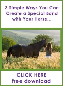 3 Simple Ways To Bond With Your Horse